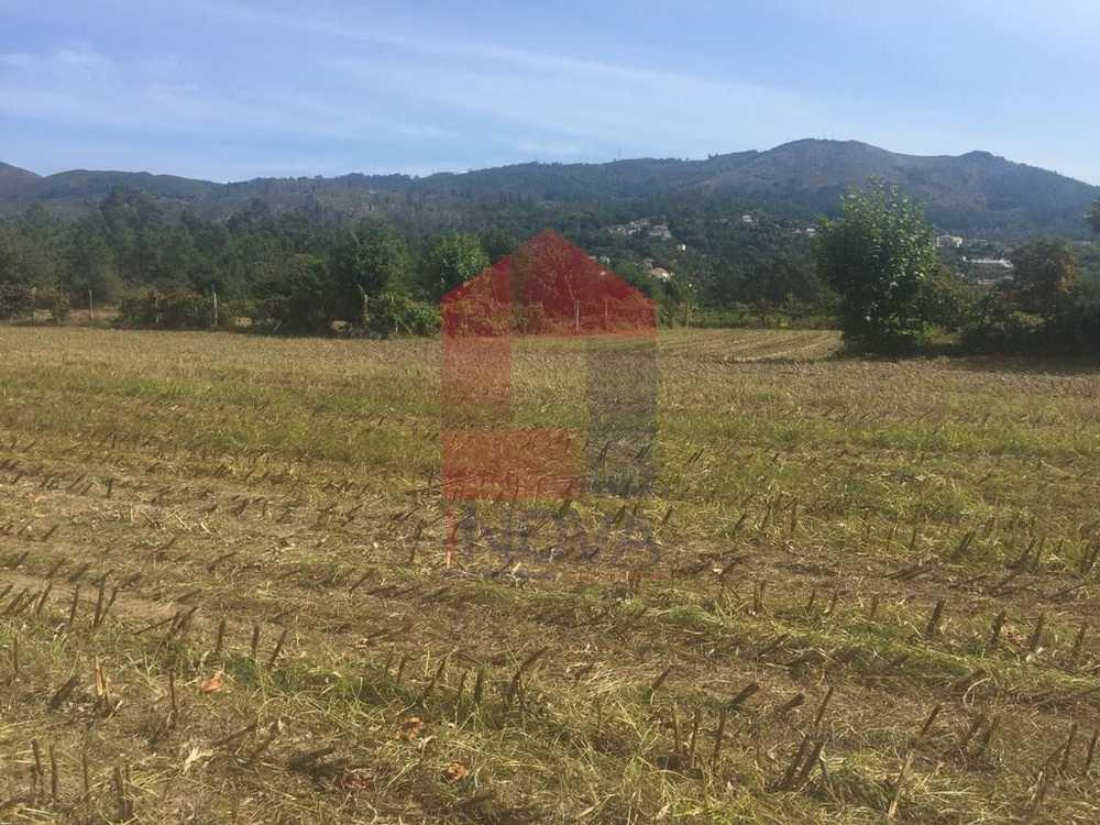 Ponte Vila Verde terrain picture 115023