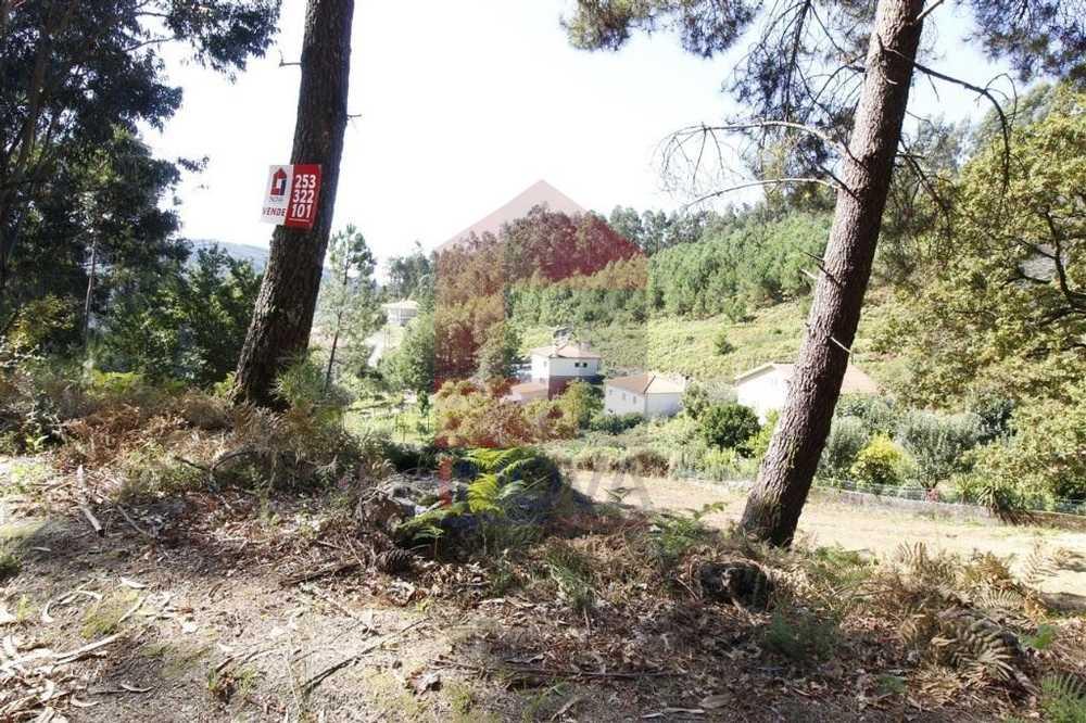 Ribeira Vila Verde terrain picture 115722