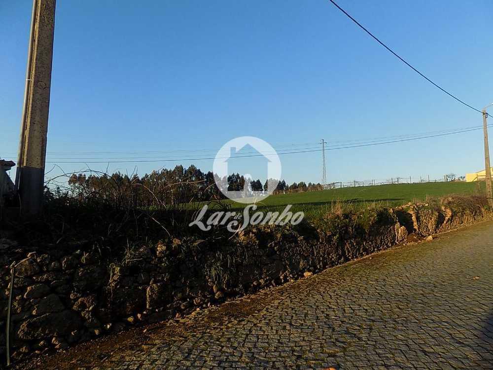 Parada Anadia terrain picture 111437