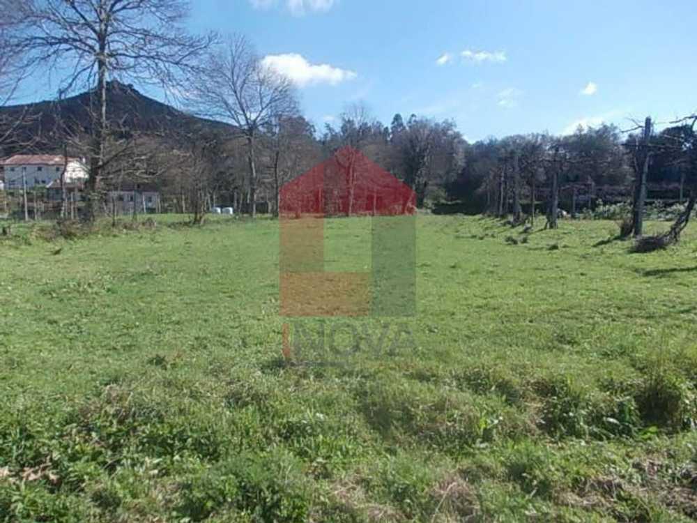 Coucieiro Vila Verde terrain picture 115235