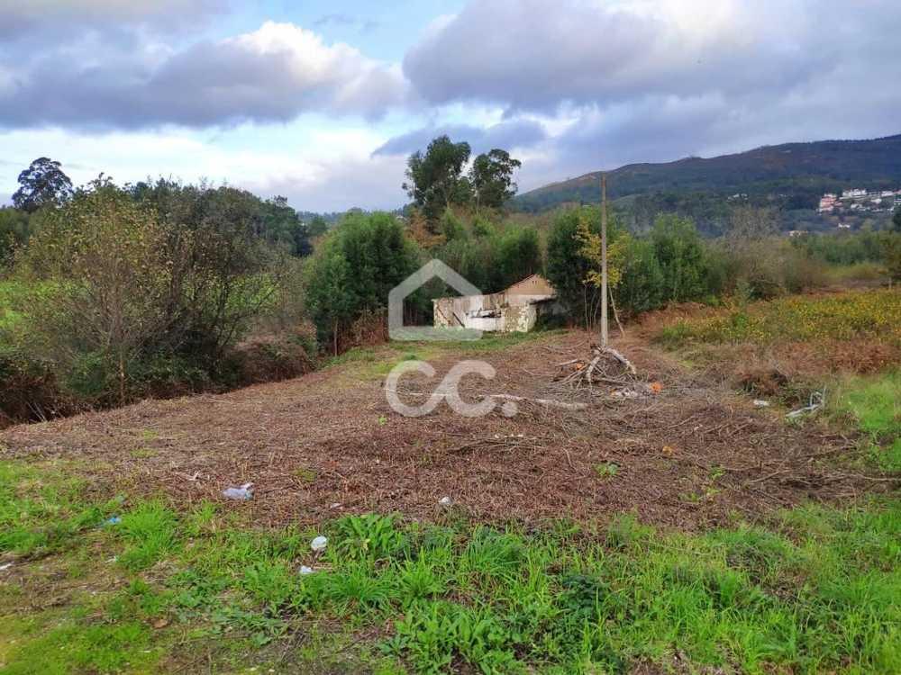 Gandra Valença house picture 113000