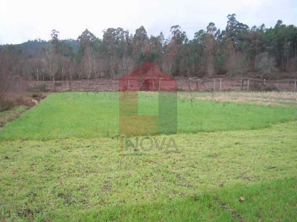 Lanhas Vila Verde terrain picture 115442