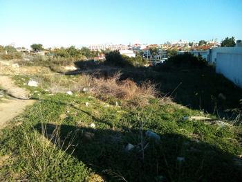Porches Lagoa (Algarve) terrain picture
