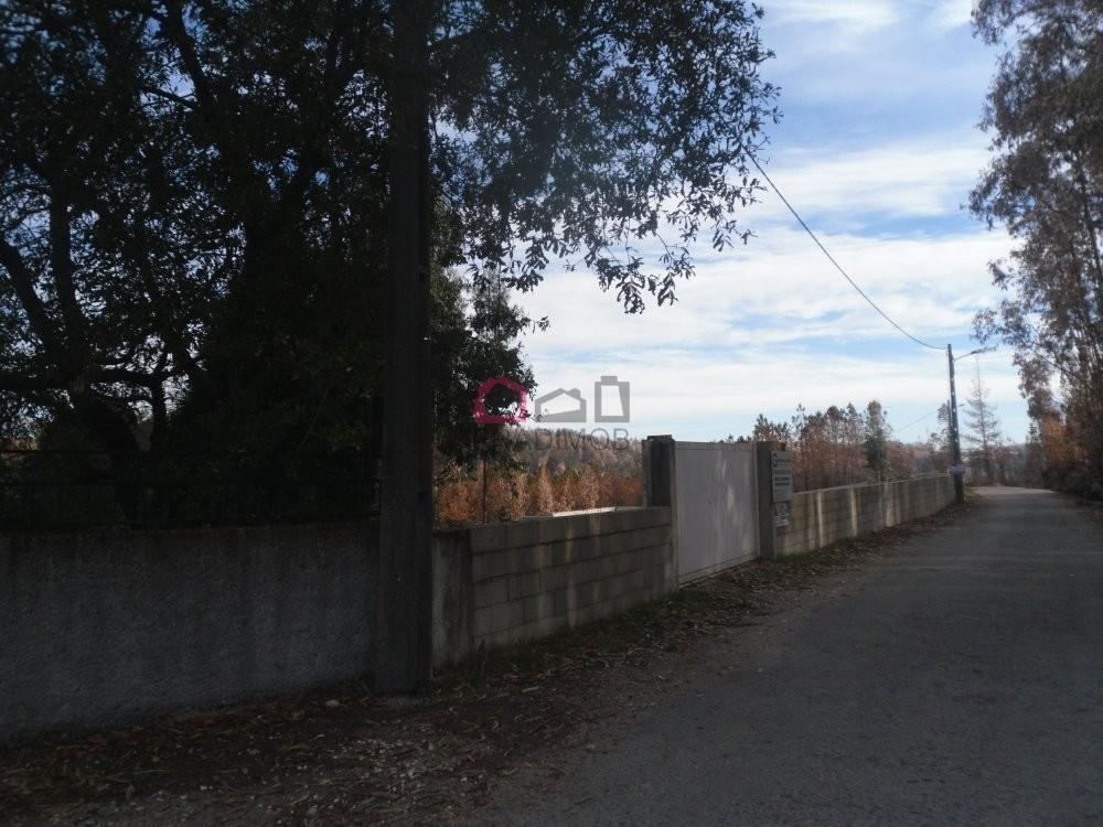 Quinta de Silvares Armamar tomt photo 4799