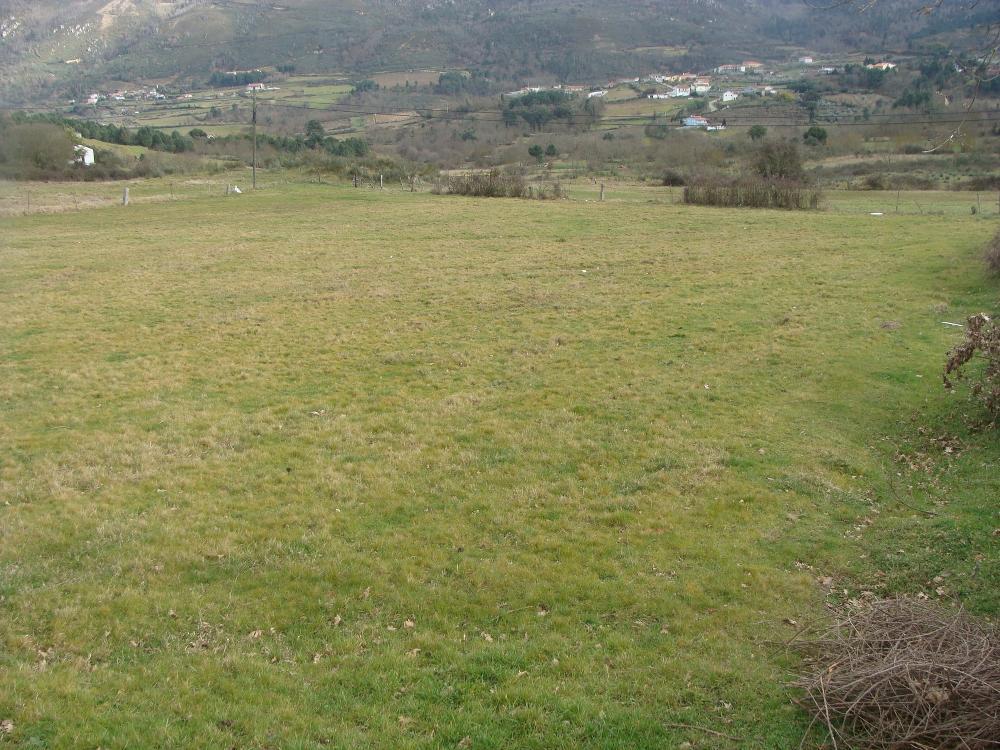 Adega Santa Marta De Penaguião terrain picture 3639