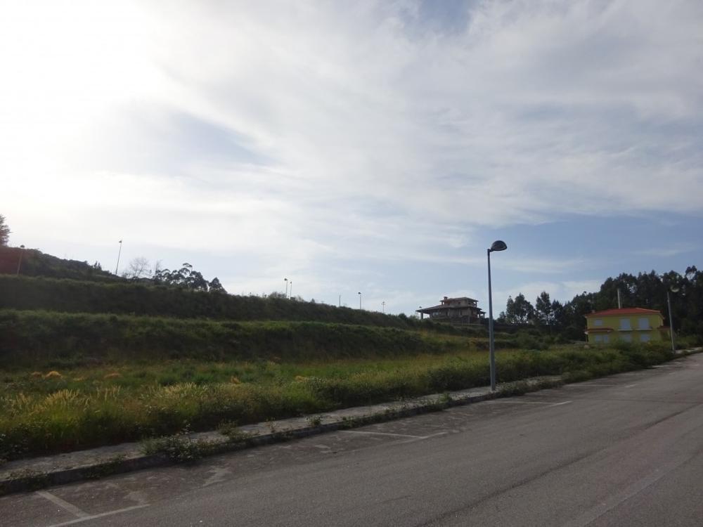 Ferradosa São João Da Pesqueira terrain photo 4685
