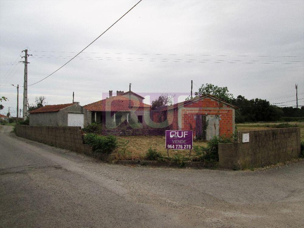 Coimbrão Leiria terrain picture 8615