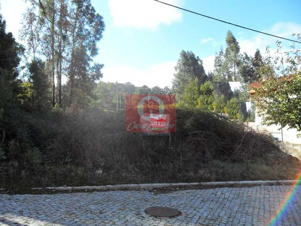 Fornelo Vila Do Conde terrain picture 53599