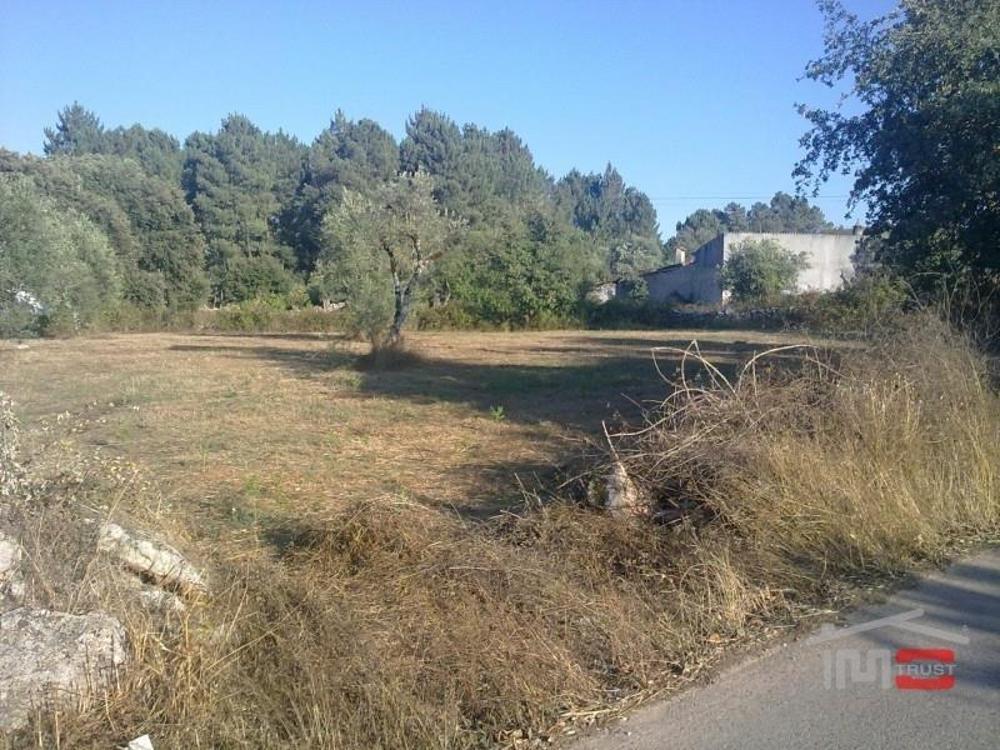 Fátima Ourém Grundstück Bild 11344