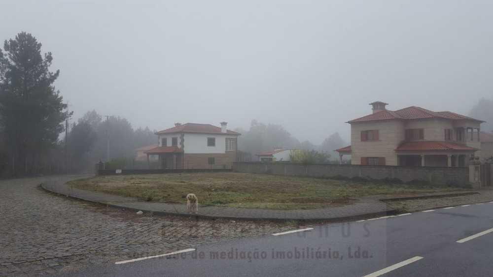Gondar Amarante terrain picture 48723
