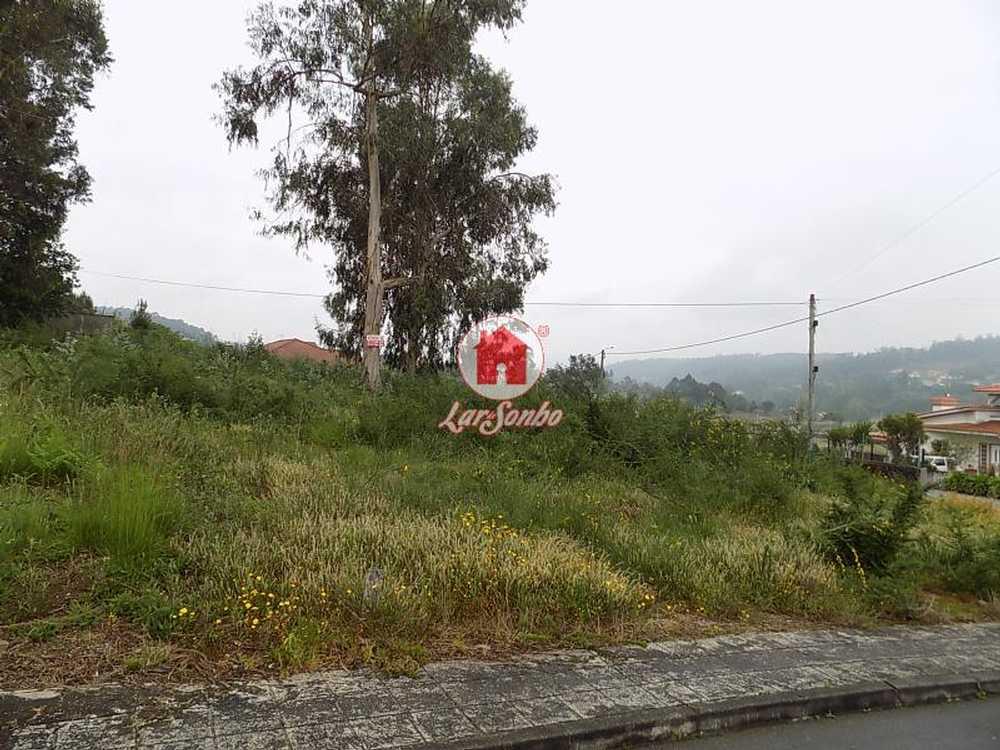 Nine Vila Nova De Famalicão terrain picture 54222