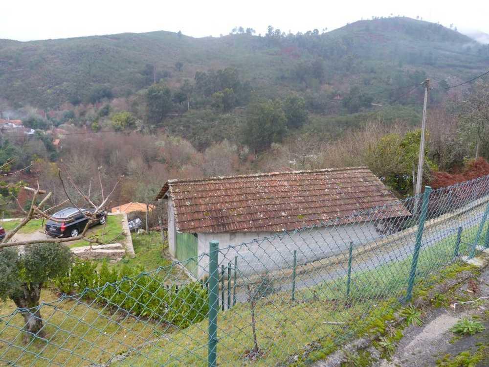 Rio Ponte Da Barca house picture 48756