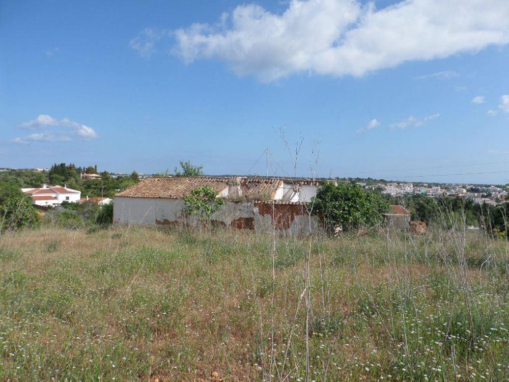 Guia Albufeira terrain picture 9704