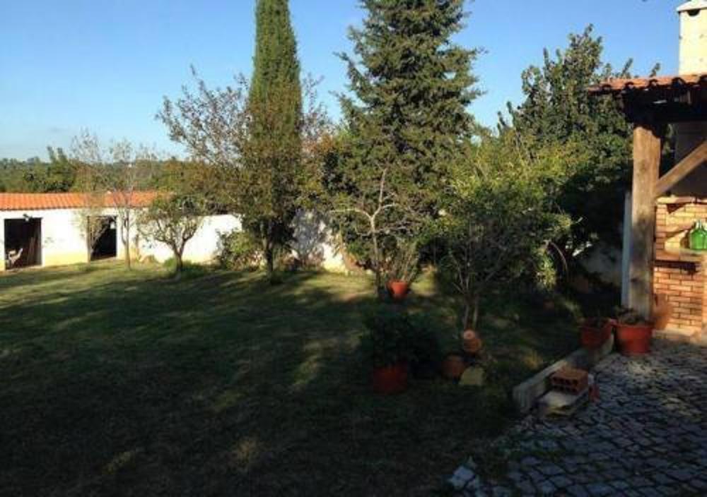 Cernache Coimbra Haus Bild 9370