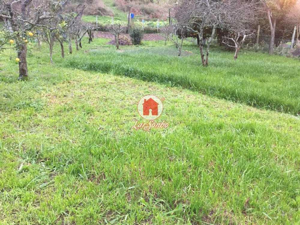 Guilhabreu Vila Do Conde terrain picture 54615