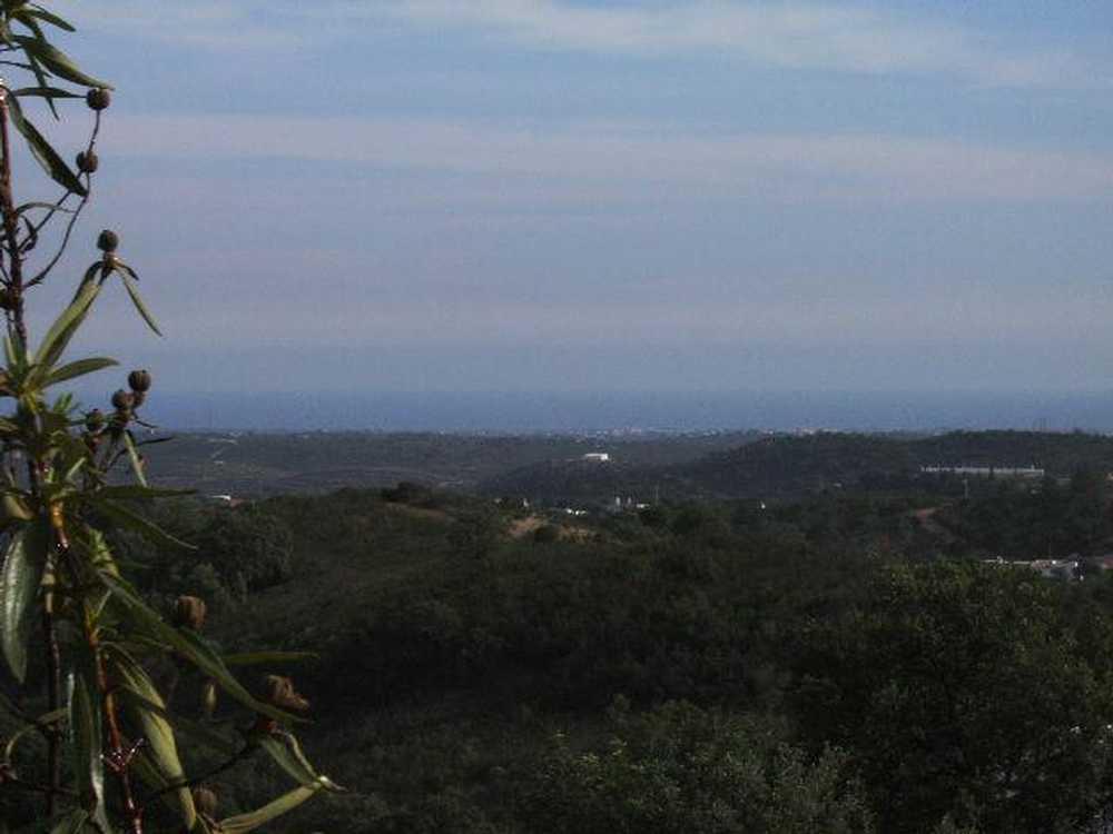 Fonte do Bispo Tavira terrain picture 38087