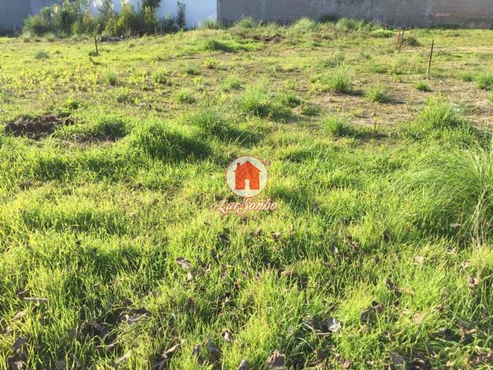 Gião Vila Do Conde terrain picture 54485