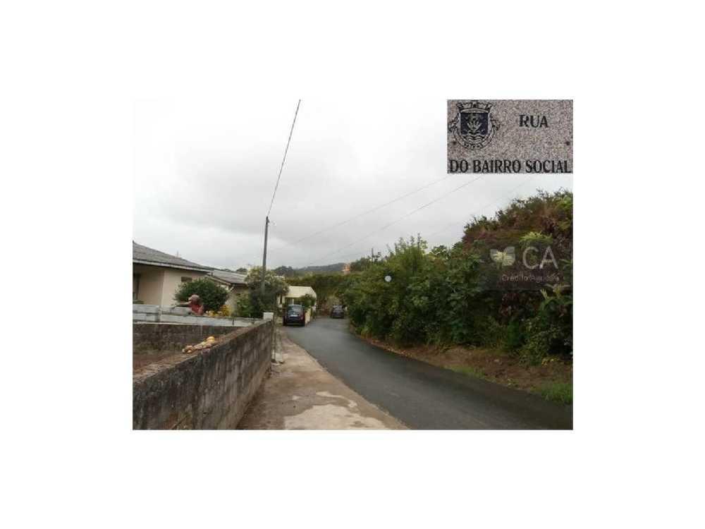 Seixas Caminha terrain picture 48840