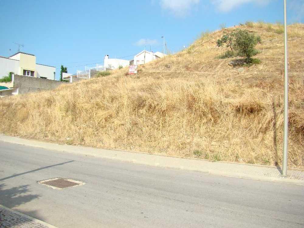 Alfândega da Fé Alfândega Da Fé terrain picture 49196