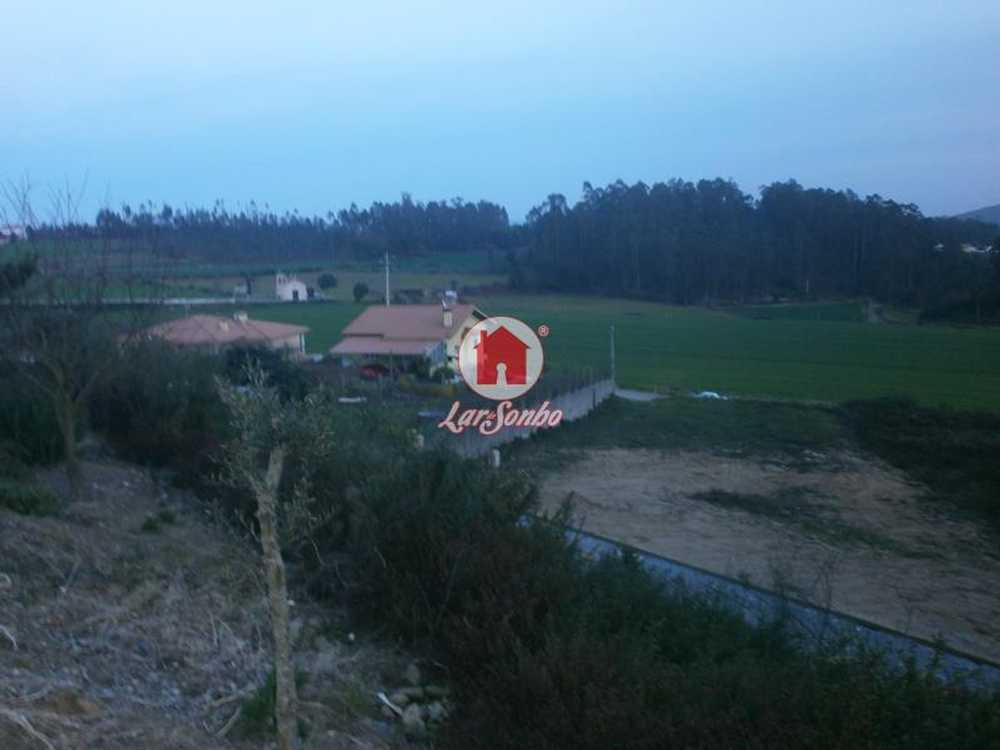 Parada Anadia terrain picture 54112