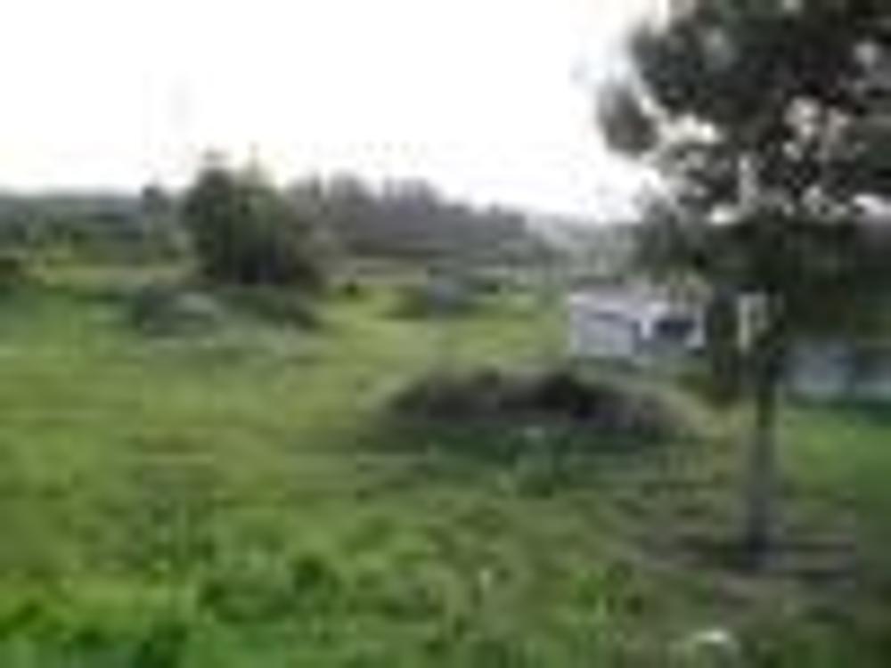 Maia Maia Grundstück Bild 9231