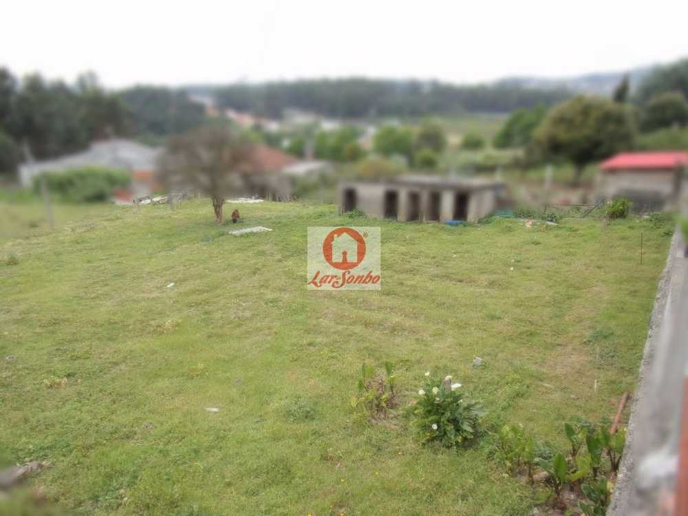 Landim Vila Nova De Famalicão terrain picture 54732