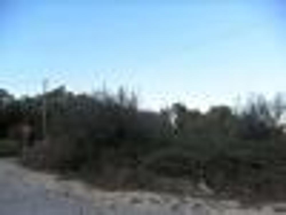 Alfena Valongo Grundstück Bild 9233