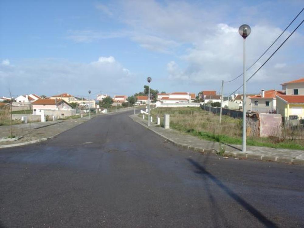 Silveira Torres Vedras terrain picture 5598