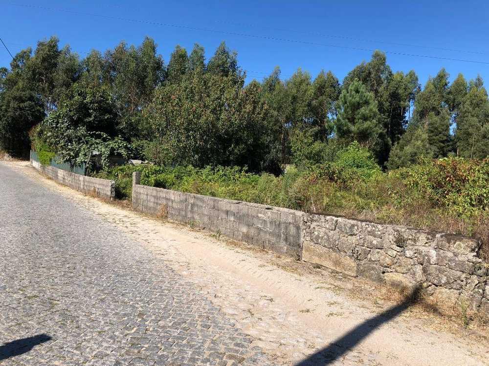 Vila Seca Barcelos terrain picture 48881