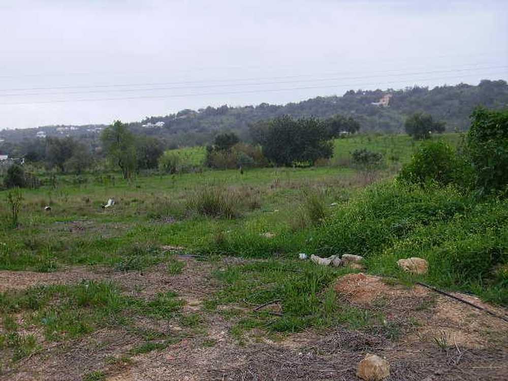 Fuseta Olhão terrain picture 37937