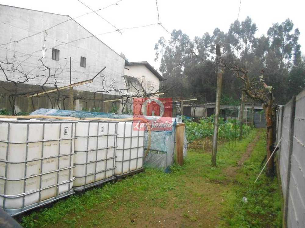 Aveleda Vila Do Conde terrain picture 53780