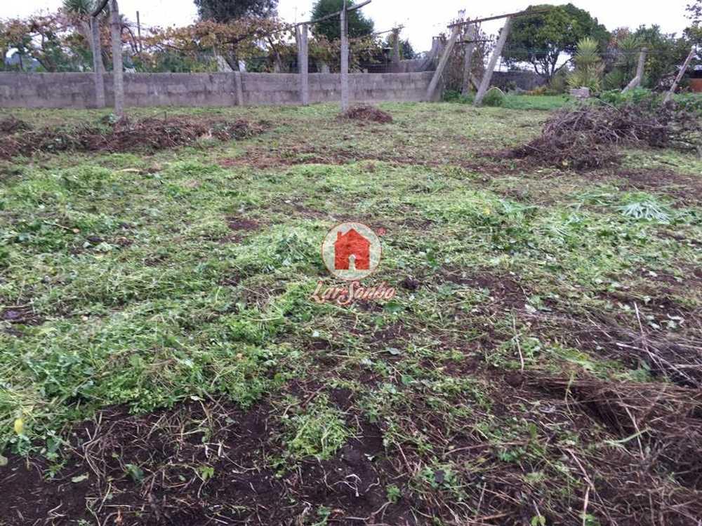 Gião Vila Do Conde terrain picture 54465