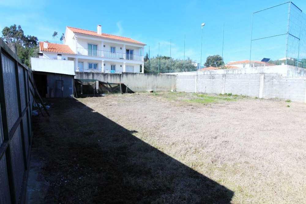 Outeiro da Fonte Leiria terrain picture 50146