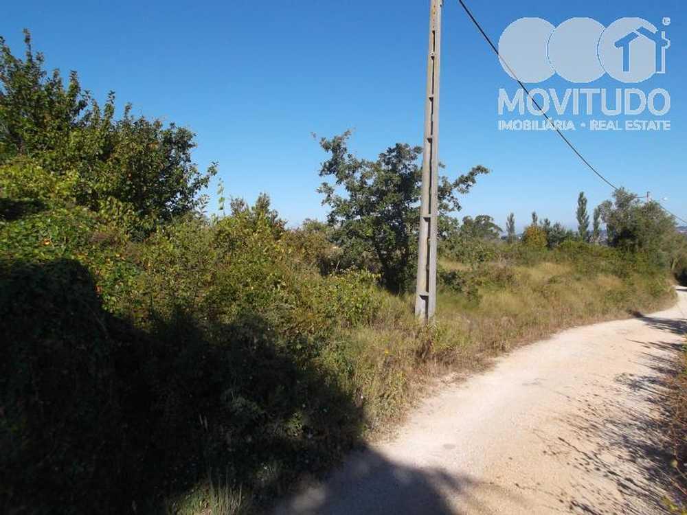Ota Alenquer terrain picture 49279