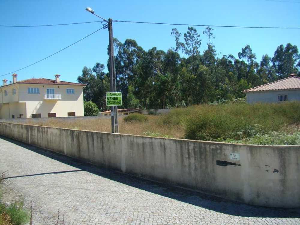 Airó Barcelos terrain picture 48787