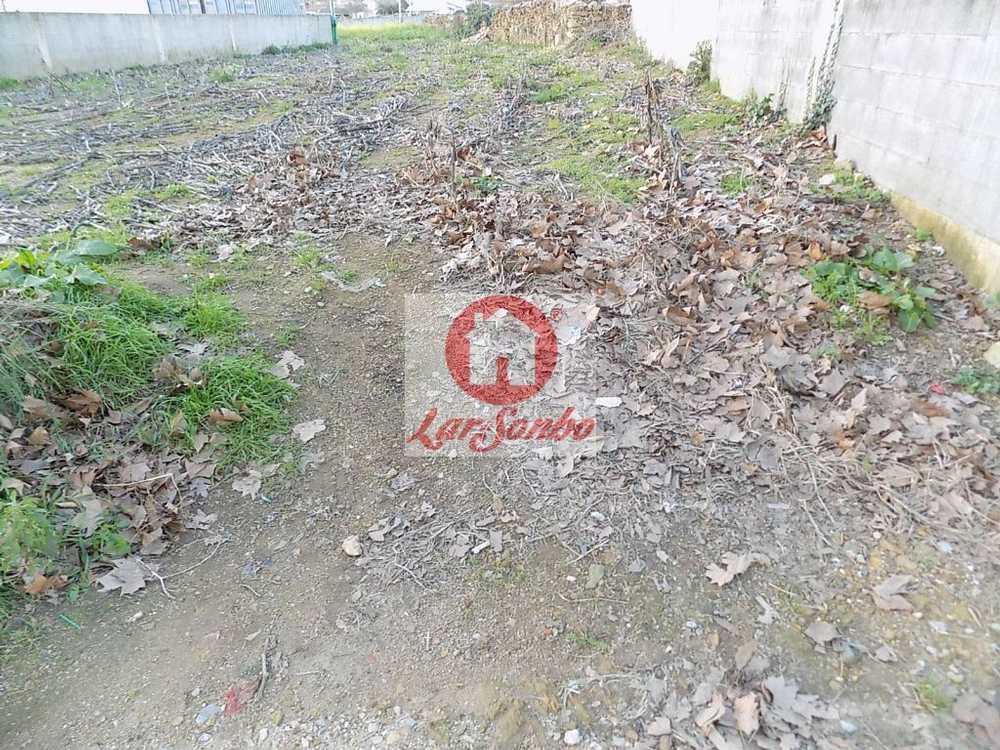 Rates Póvoa De Varzim terrain picture 55046