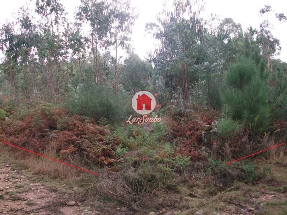 Fornelo Vila Do Conde terrain picture 53891