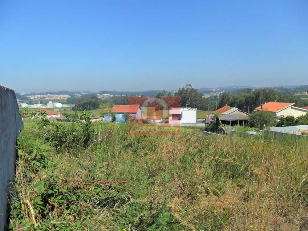 Retorta Vila Do Conde terrain picture 53644