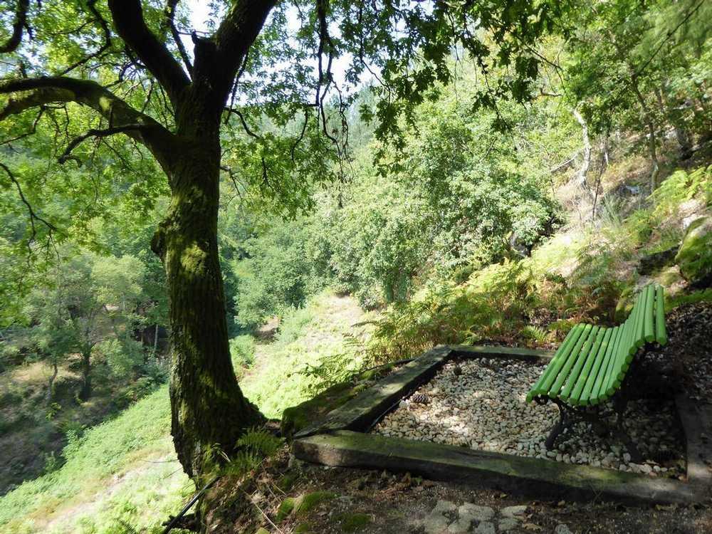 Sá Terras De Bouro terrain photo 49892