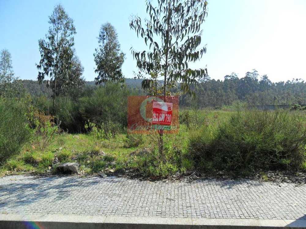 Junqueira Vila Do Conde terrain picture 53506