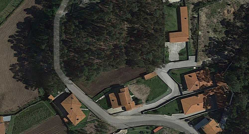 Pereira Barcelos terrain picture 48821