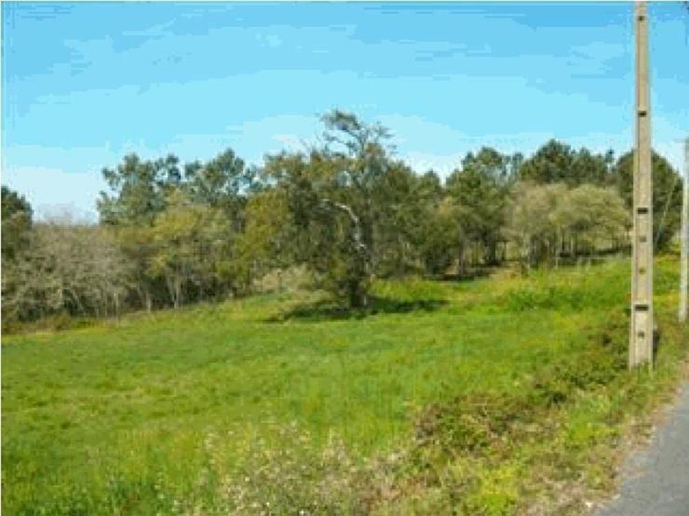 Cheleiros Mafra terreno foto #request.properties.id#
