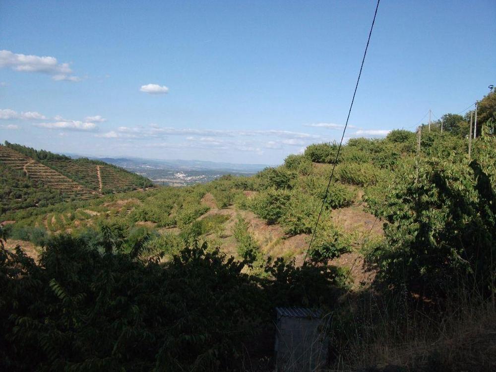 Alcongosta Fundão terreno foto #request.properties.id#