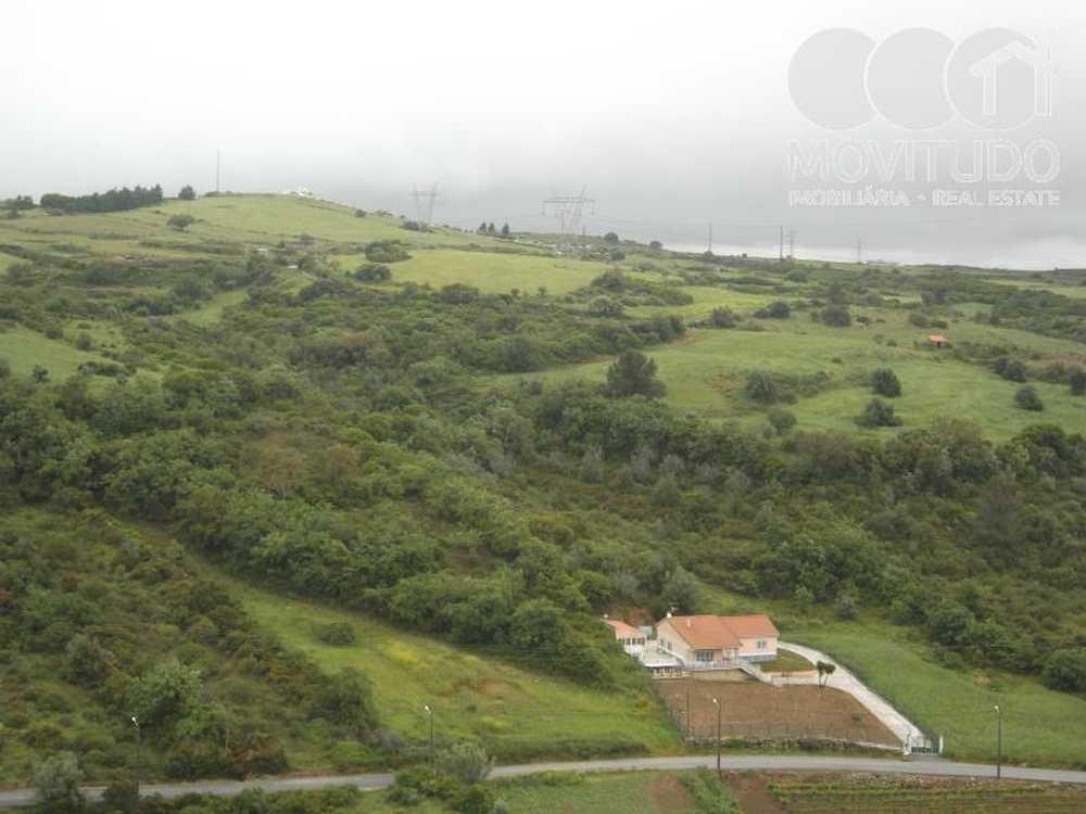 Santiago dos Velhos Arruda Dos Vinhos terrain picture 49283