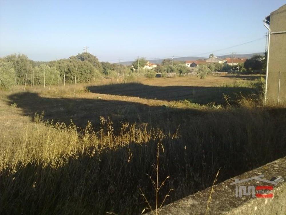 Fátima Ourém Grundstück Bild 11346