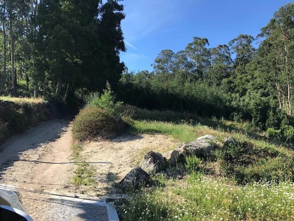 Creixomil Barcelos terrain picture 48817