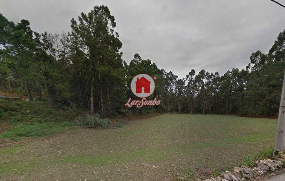 Junqueira Vila Do Conde terrain picture 54413