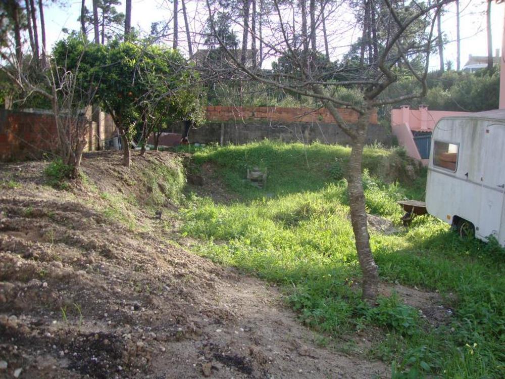 Sobreda Almada terrain picture 25771