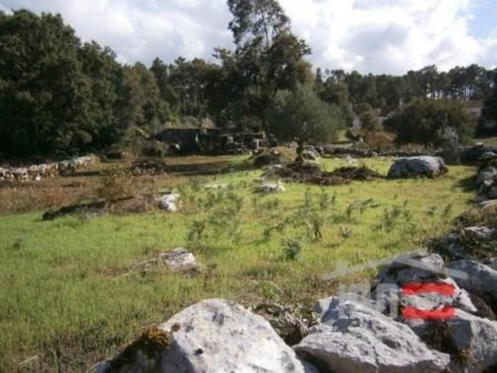 Fátima Ourém Grundstück Bild 11349