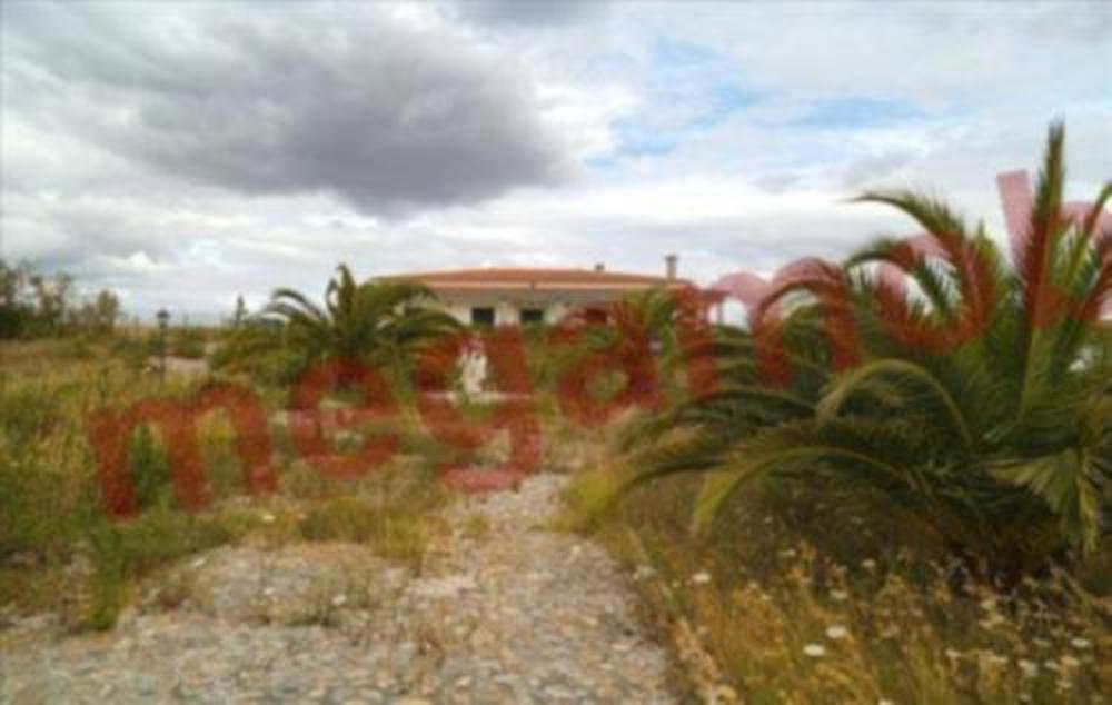 Benavente Benavente house picture 24469
